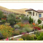 work13, landscape design, garden design, vvm designs