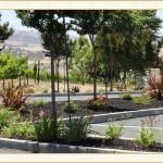 work14, landscape design, garden design, vvm designs