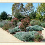 landscape design, garden design, vvm designs