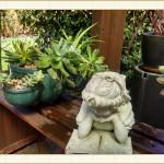 container02_Framed, landscape design, garden design, vvm designs