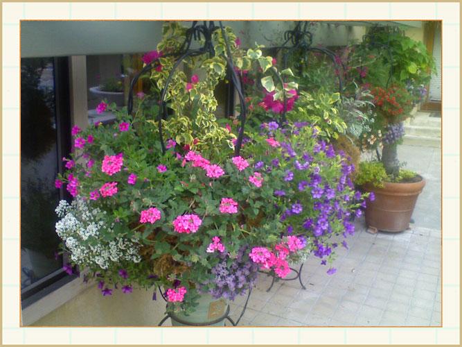 container04_Framed, landscape design, garden design, vvm designs