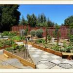 container05_Framed, landscape container, landscape design, garden design, vvm designs